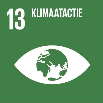 SDG-13
