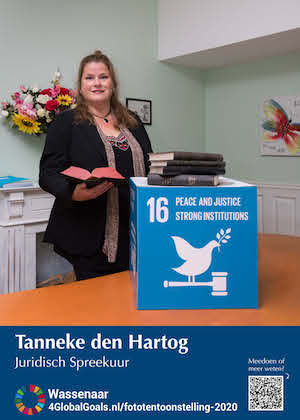 Global Goals 25-911