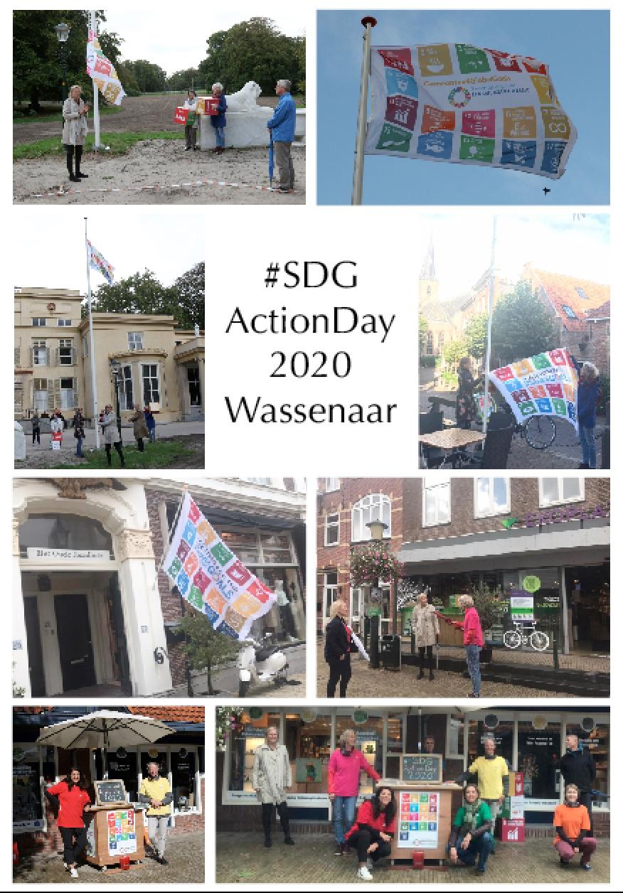 SDGActionDay2020
