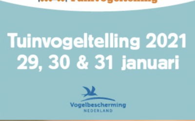 De Nationale Tuinvogeltelling 2021
